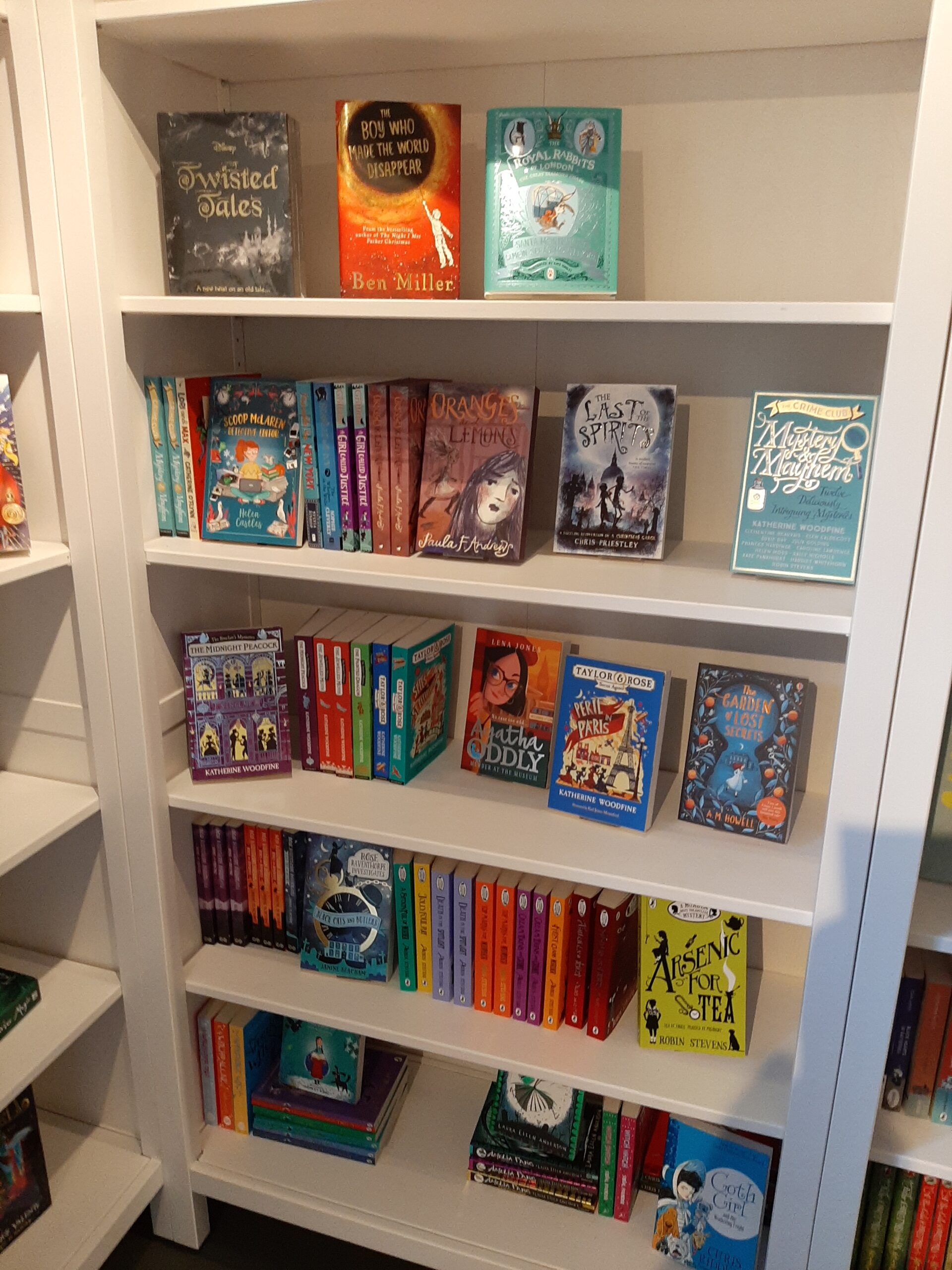 my book on a shelf in The Blue House Bookshop