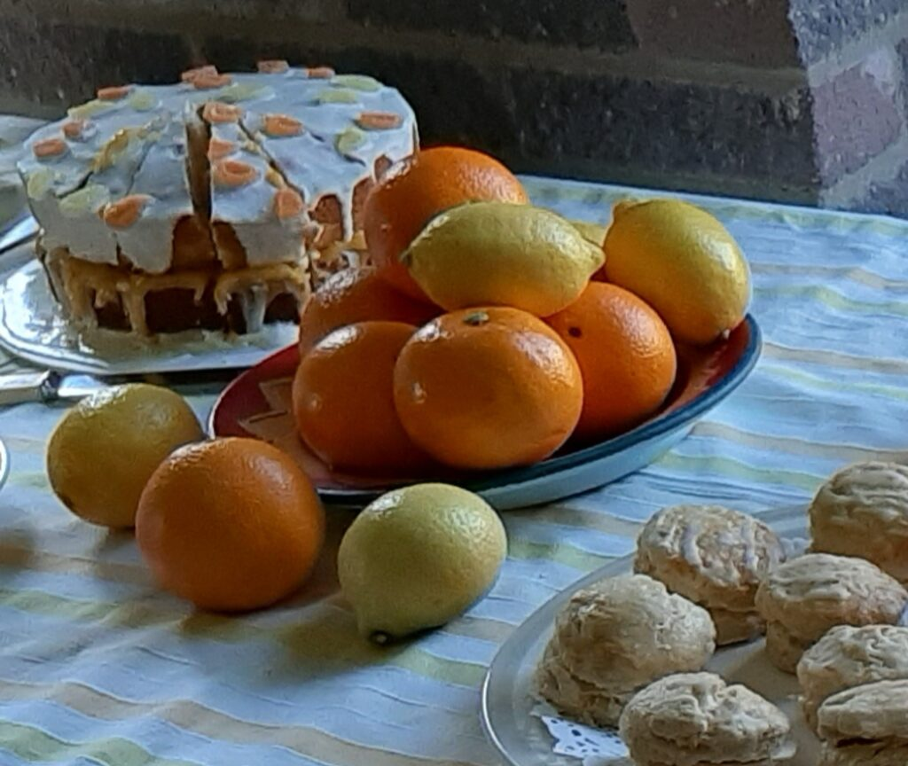 cake and oranges and lemons